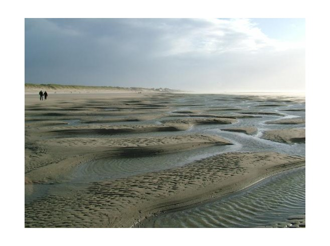 3868282-tide-has-receeded-fort-mahon-plage